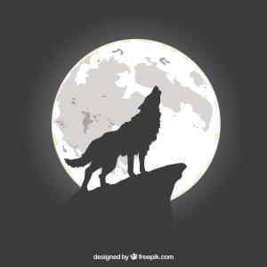 lobo_aullando a la luna